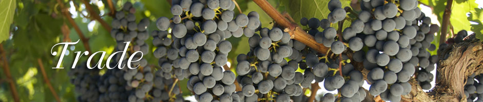 Trade-header-grapes